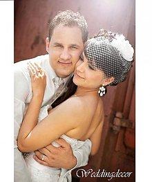 Ozdoby do vlasov - Svadobná sieťka pierko - 3134101