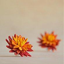 Náušnice - Chryzantémy na ouška - v barvách podzimu - 3212762