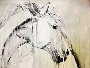 Obrazy - The white one  - 3299254