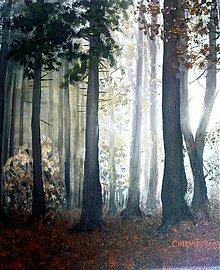 Obrazy - tajmstvo lesa - 3299267