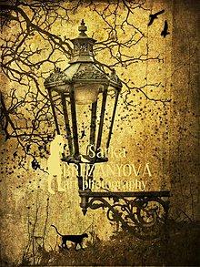 Obrazy - LAMPA (4 (fotoplátno 50x70 cm)) - 3369309