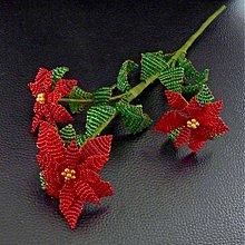 Dekorácie - Vánoční hvězda z korálků - 3374026