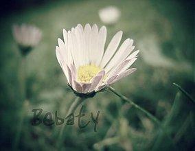 Fotografie - blooming - 3408061