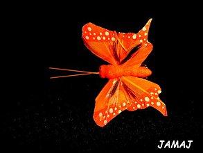 Galantéria - tmavo oranžový motýľ - 3499412