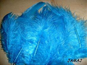 Suroviny - modré pierka - 3510417