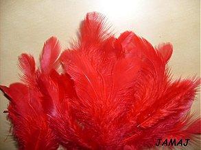 Suroviny - červené pierka - 3510427