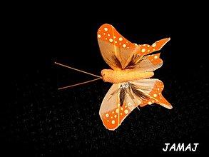 Galantéria - svetlooranžový motýľ - 3511015