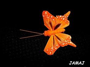 Galantéria - stredne oranžový motýľ - 3511466