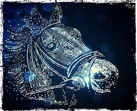 Galantéria - Kôň - 3596514
