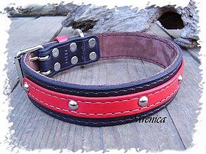 Pre zvieratká - Podšívaný obojok pre ťažké plemená psov - 3658208