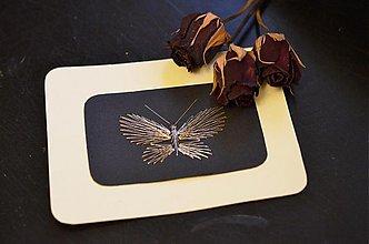Obrázky - Motýldovia - 3664536
