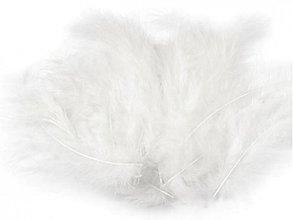 Suroviny - Pštrosie perie 20 ks - 3674571
