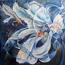 Obrazy - Magnolia Cobus - 389912