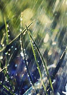 Fotografie - Ranný dážď - 394968