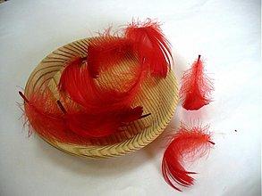 Suroviny - pierka červené/10ks - 50041