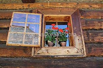 Fotografie - Muškáty v drevenici - 522191