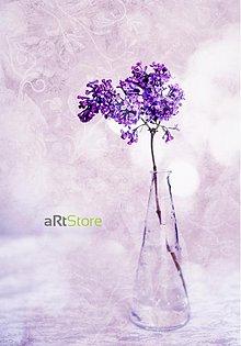 Fotografie - Violet dream - 595727