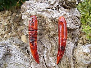 Náušnice - RED CHILI - 713303