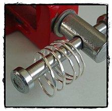Prstene - holubkovce prstienkove - 86701