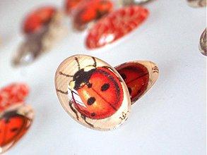 Komponenty - Vintage sklenený kabošon s motívom / 13x18mm (Ladybug) - 880359